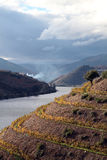 Alt Douro Wein-Region Lizenzfreies Stockfoto