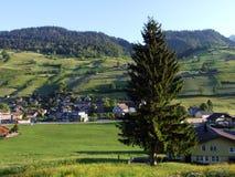 Alt St Johann in het Toggenburg-gebied en in de Thur-Riviervallei stock fotografie