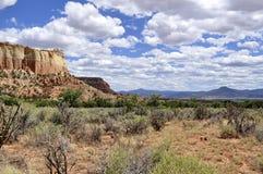 Alta alza del desierto Foto de archivo