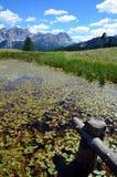 Alta Badia Alto Adige Italy Fotografia Stock Libera da Diritti