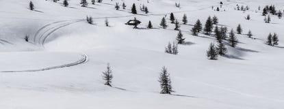 Alta Badia, neve ed alberi - dolomia, Italia Fotografie Stock