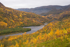 Alta canyon autumn. Autumn in Alta canyon Norway, with tourists paddling in canoes on the river in distance Stock Image
