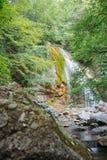 Alta cascada magnífica en el bosque Fotografía de archivo