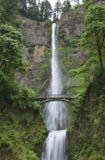 Alta cascata con un ponte Fotografie Stock