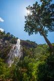 Alta cascata di Bambarakanda Immagini Stock