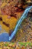 Alta cascata di vista magica sulle rocce in autunno con la l gialla Fotografia Stock