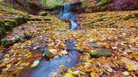 Alta cascata di vista magica sulle rocce in autunno con la l gialla Fotografia Stock Libera da Diritti