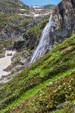 Alta cascata e rododendro di fioritura nelle montagne Fotografia Stock Libera da Diritti