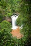 Alta cascata in foresta tropicale Fotografie Stock Libere da Diritti