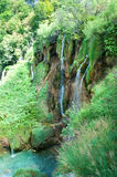 Alta cascata fra fogliame verde Fotografia Stock Libera da Diritti