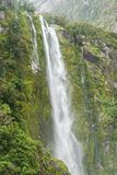 Alta cascata fresca con muschio verde Fotografia Stock Libera da Diritti