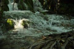 Alta cascata, l'acqua che scorre dalle rocce nel lago Laghi Plitvice della sosta nazionale Fotografie Stock Libere da Diritti
