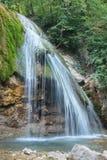 Alta cascata magnifica nel legno Immagine Stock