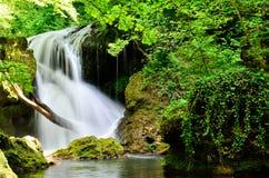 Alta cascata nella foresta Fotografie Stock