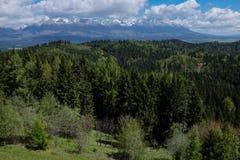 Alta catena montuosa di Tatra Fotografia Stock