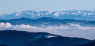 Alta catena montuosa di Tatras con molti picchi dalla collina di hora di Lysa in montagne di Moravskoslezske Beskydy in repubblic Fotografie Stock Libere da Diritti