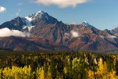 Alta catena montuosa innevata Alaska di Chugach dei picchi Immagini Stock