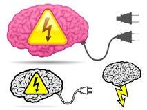 Alta colección del cerebro del coltage con el enchufe del conector Imagen de archivo