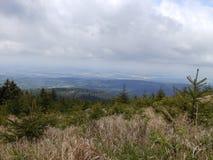Alta collina boscosa Fotografie Stock