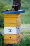 Alta colmena de la abeja en colmenar Fotografía de archivo