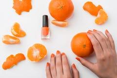 Alta concentrazione di colore arancio Immagine Stock