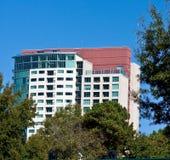 Alta costruzione del condominio di aumento che aumenta dagli alberi Fotografia Stock Libera da Diritti