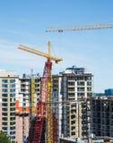 Alta costruzione di aumento con le gru rosse e gialle Fotografia Stock Libera da Diritti