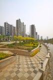 Alta costruzione e l'ambiente circostante Immagini Stock