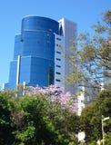 Alta costruzione moderna veduta da un parco Immagini Stock Libere da Diritti