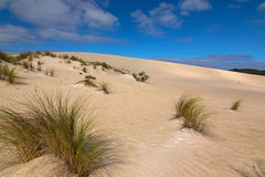 Alta cresta della collina della sabbia da lontano a poca duna di sabbia bianca del Sahara Fotografia Stock
