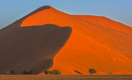 Alta duna in Namib-Naukluft NP Immagini Stock