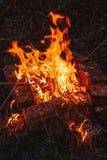 Alta fiamma di un falò Fuoco nella notte Fotografia Stock