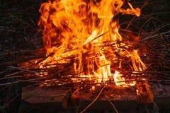 Alta fiamma di un falò Fuoco nella notte Immagine Stock