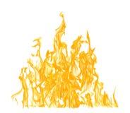 Alta fiamma gialla isolata su bianco Fotografie Stock