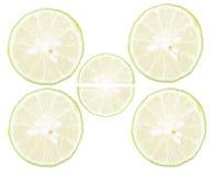 Alta immagine-fine chiave sulle fette del limone Fotografia Stock Libera da Diritti