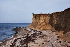 Alta linea costiera verticale in Danimarca Immagine Stock