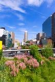 Alta linea parco Manhattan New York Stati Uniti Fotografie Stock Libere da Diritti