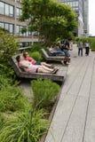 Alta linea parco in New York U.S.A. Immagini Stock Libere da Diritti
