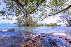 Alta marea al paesino di pescatori Immagine Stock Libera da Diritti