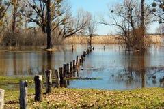 Alta marea ed inondazione stagionale nella primavera dopo la fusione della neve Fotografie Stock Libere da Diritti