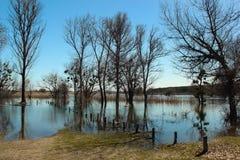 Alta marea ed inondazione stagionale nella primavera dopo la fusione della neve Fotografia Stock