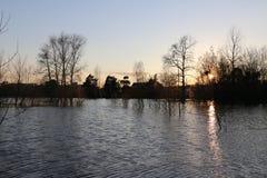 Alta marea in fiume Fotografia Stock