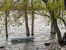 Alta marea, il fiume Truckee Immagini Stock Libere da Diritti