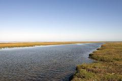 Alta marea nel mare di Wadden Immagini Stock Libere da Diritti