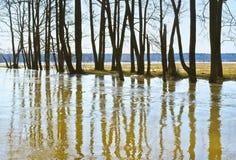Alta marea in primavera Immagini Stock Libere da Diritti