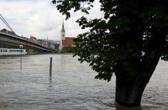 Alta marea su Danubio a Bratislava, Slovacchia Fotografie Stock Libere da Diritti