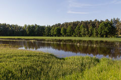 Alta marea sui campi dei bavarians Immagine Stock Libera da Diritti