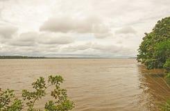 Alta marea sul Amazon Immagini Stock