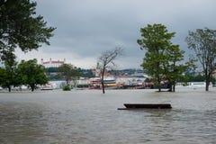Alta marea sul Danubio in Slovacchia Fotografie Stock