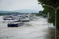 Alta marea sul Danubio in Slovacchia Immagine Stock